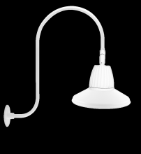"RAB Lighting GN3LED13NSSTW - GOOSENECK UPCURVE 30"" HIGH, 25"" FROM WALL 13W NEUTRAL LED 15"" STRAIGHT SHADE SPOT REFLEC"