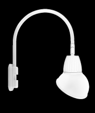"RAB Lighting GN5LED13NRAD11W - GOOSENECK POLE 20"" HIGH, 19"" FROM POLE 13W NEUTRAL LED 11"" ANGLED DOME SHADE RECTANGULAR"