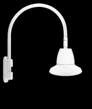 "RAB Lighting GN5LED13NST11W - GOOSENECK POLE 20"" HIGH, 19"" FROM POLE 13W NEUTRAL LED 11"" STRAIGHT SHADE WHITE"