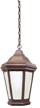Troy FFCD6895BZP - 1Lt Hangin Lant Fluorescent