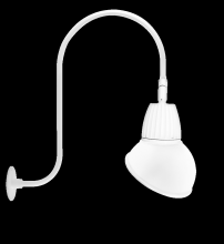 "RAB Lighting GN3LED13NAD11W - GOOSENECK UPCURVE 30"" HIGH, 25"" FROM WALL 13W NEUTRAL LED 11"" ANGLED DOME SHADE WHITE"