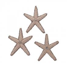 Sterling Industries 7159-022/S3 - Mixed Shell Star Fish