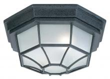 Capital 9800BK - 2 Light Outdoor Ceiling Fixture