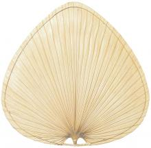 Fanimation PMP2AB - Palmetto Blade Set of 3 - 18 inch - Wide Oval Palm - A